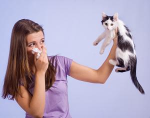 Как проявляется аллергия у взрослых
